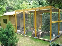 Plans For Building A Rabbit Hutch Outdoor Best 25 Outdoor Rabbit Hutch Ideas On Pinterest Bunny Hutch