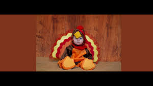 baby turkey costume thanksgiving baby baby turkey