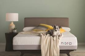 wayfair introduces nora the all new and affordable premium bed in