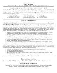 sample resume for tax accountant finance manager resume example