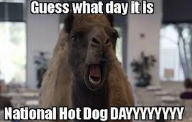 Hot Day Meme - hot dog day 2015 memes funny photos jokes images