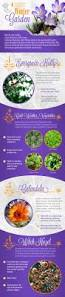 4 cold weather plants for garden infographic