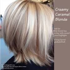 Caramel Hair Color With Honey Blonde Highlights Ideas I Saw On Facebook For My Clients Color Ideas