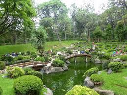 imagenes de jardines japones foto de bosque colomos guadalajara jardín japones tripadvisor
