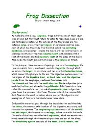 download frog dissection packet docshare tips