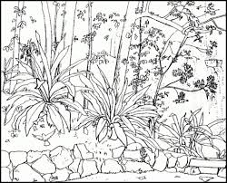 nature coloring pages for adults pertaining to really encourage to