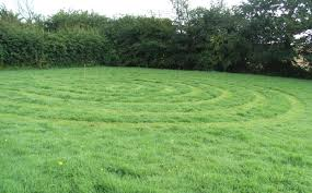 how to make a grass labyrinth the sproutling writes