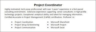 professional summary for resume hitecauto us