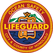 ocean safety u0026 lifeguard services home