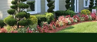 Landscape Nurseries Near Me by Abbott U0027s Landscape Nursery Nursery U0026 Landscaping Ann Arbor Mi