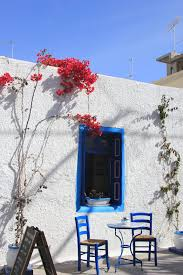 free images snow winter house flower home spring weather