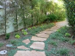 alternatives to grass in backyard pro portfolio lawn swap for low water landscape in sherman oaks