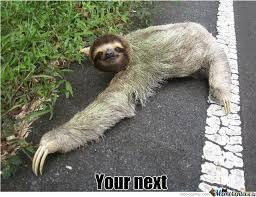 Sloth Meme Rape - sloth road rape by moolala meme center
