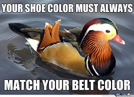 Advice Meme - new meme fashion advice mallard by therealspiderman meme center