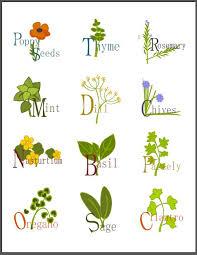 top 10 ideas for diy jar labels jar labels plant labels and jars