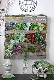 69 best vertical garden images on pinterest gardening indoor