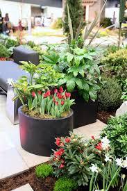 highlights from the northwest flower and garden show 2013 garden