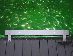 hydro glow fishing lights dock master 110 vac hydro glow fish lights hydrodock striper
