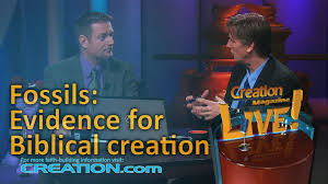 fossils evidence for biblical creation creation magazine live 3