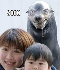 Soon Meme - 30 funny soon meme pics