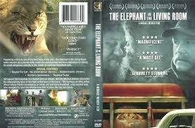 elephant in the living room the elephant in the living room netflix living room meaning big