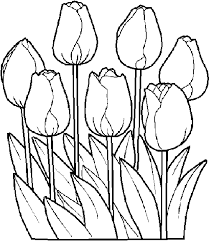 coloring pages cute tulips coloring pages 37 tulips coloring