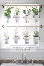 Hanging Pictures The Bird And Her Song Indoor Hanging Herb Garden