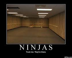 Ninja Memes - ninjas where are they now ffxiah com