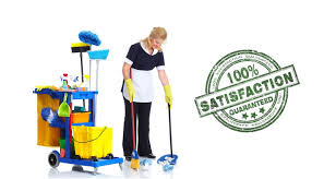 austral cleaning google