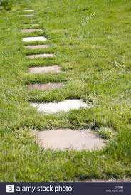 stepping stone paving slabs form a path across grass lawn in a