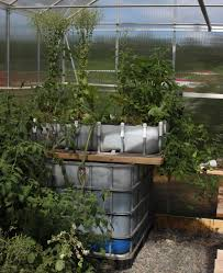 atp podcast 59 aquaponics and growing outdoor plants indoors