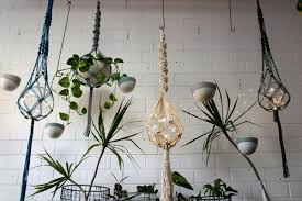 diy macramé plant holder with erica from mac and more we love perth