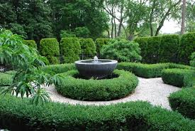 winter protection for boxwood dirt simple