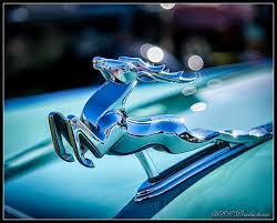 impala ornament by dracoart on deviantart