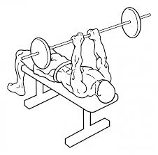 close grip barbell bench press everkinetic