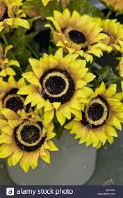 artificial sunflowers artificial sunflowers stock photo royalty free image 70113216