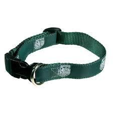 dartmouth collar dartmouth college collars for dogs