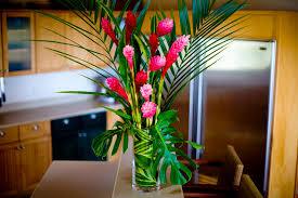 ship flowers fresh tropical flowers olopawa farms
