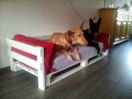 Elevated Dog Bed With Stairs 40 Diy Pallet Dog Bed Ideas Don U0027t Know Which I Love More