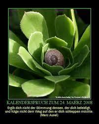 kalendersprüche monat kalendersprüche swiss poesia seite 12