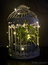 whimsically ambient birdcage with ivy and lights thrifty artsy