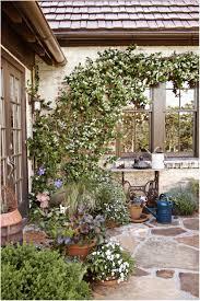 Backyard Ideas Uk Backyards Fascinating Small Vegetable Garden Ideas Uk Basic