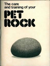 the care and training of your pet rock manual by gary dahl