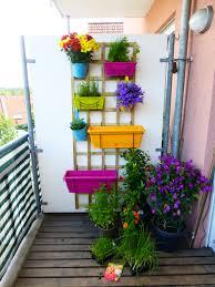 pflanzen als sichtschutz fã r balkon kleiner balkon mit verschiedenen pflanzen und kräutern in einem