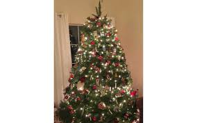 9 ways to make your christmas tree live on