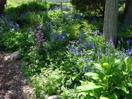 trendy idea wildflower garden design garden design with