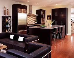 Kitchen Sofa Furniture Furniture Open Plan Kitchen With Espresso Kitchen Cabinet