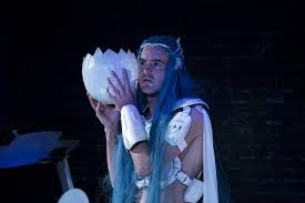 review blue wizard belvoir reviews