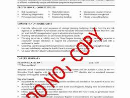 cv made professionally want the job here u0027s why you should ditch the professionally