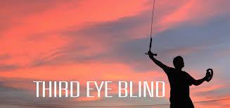 Third Eye Blind Graduate Thirdeyeblind